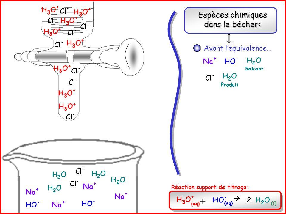 Espèces chimiques dans le bécher:
