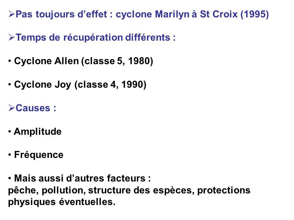 Pas toujours d'effet : cyclone Marilyn à St Croix (1995)