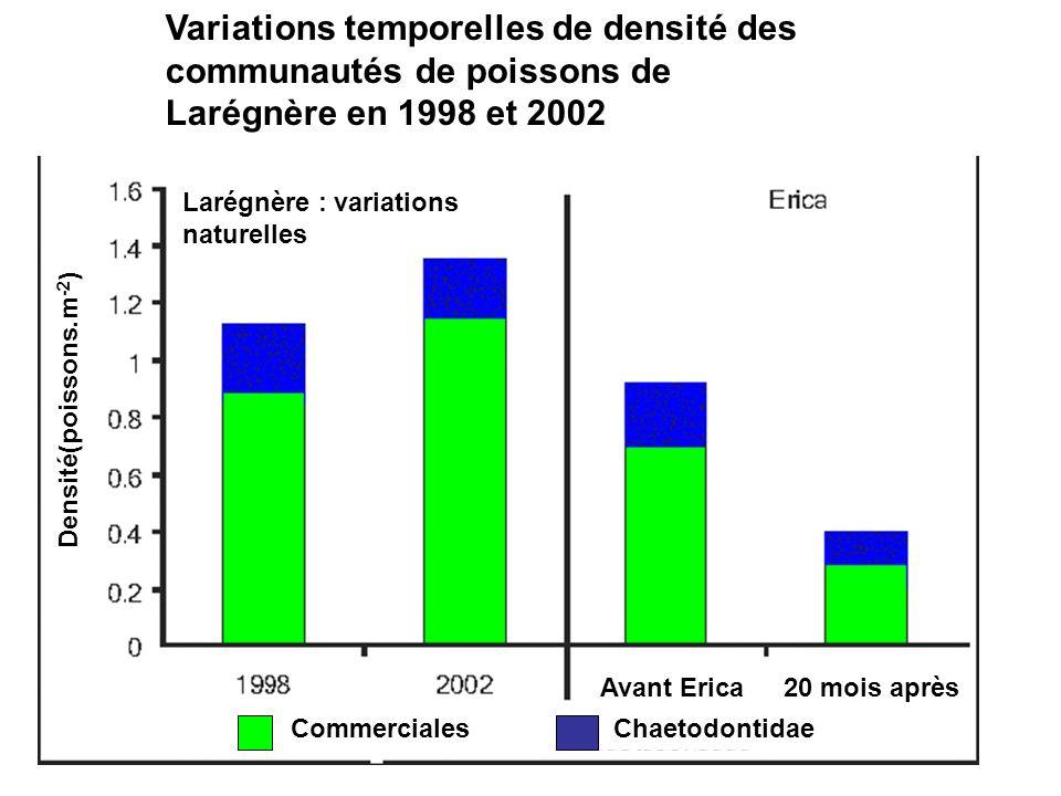 Variations temporelles de densité des communautés de poissons de Larégnère en 1998 et 2002