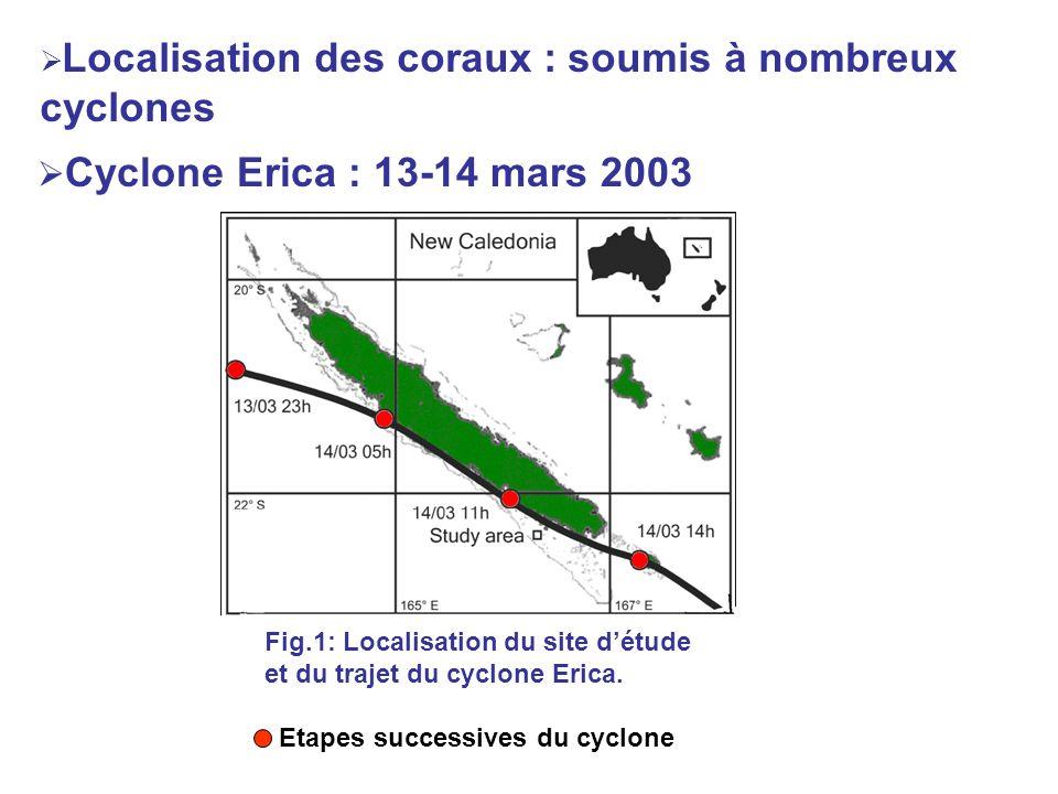 Localisation des coraux : soumis à nombreux cyclones