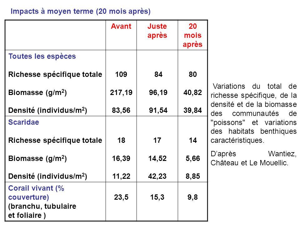 Impacts à moyen terme (20 mois après)