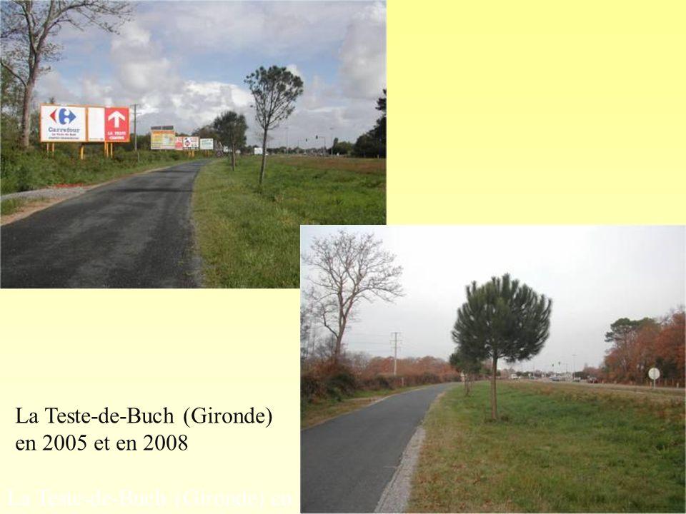 La Teste-de-Buch (Gironde)