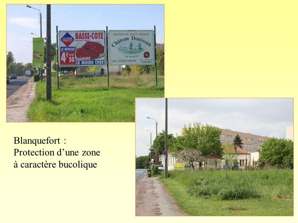 Blanquefort : Protection d'une zone à caractère bucolique