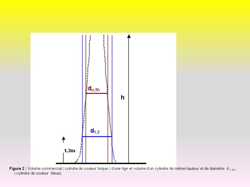 Figure 2 : Volume commercial ( cylindre de couleur brique ) d'une tige et volume d'un cylindre de même hauteur et de diamètre d 1,3m