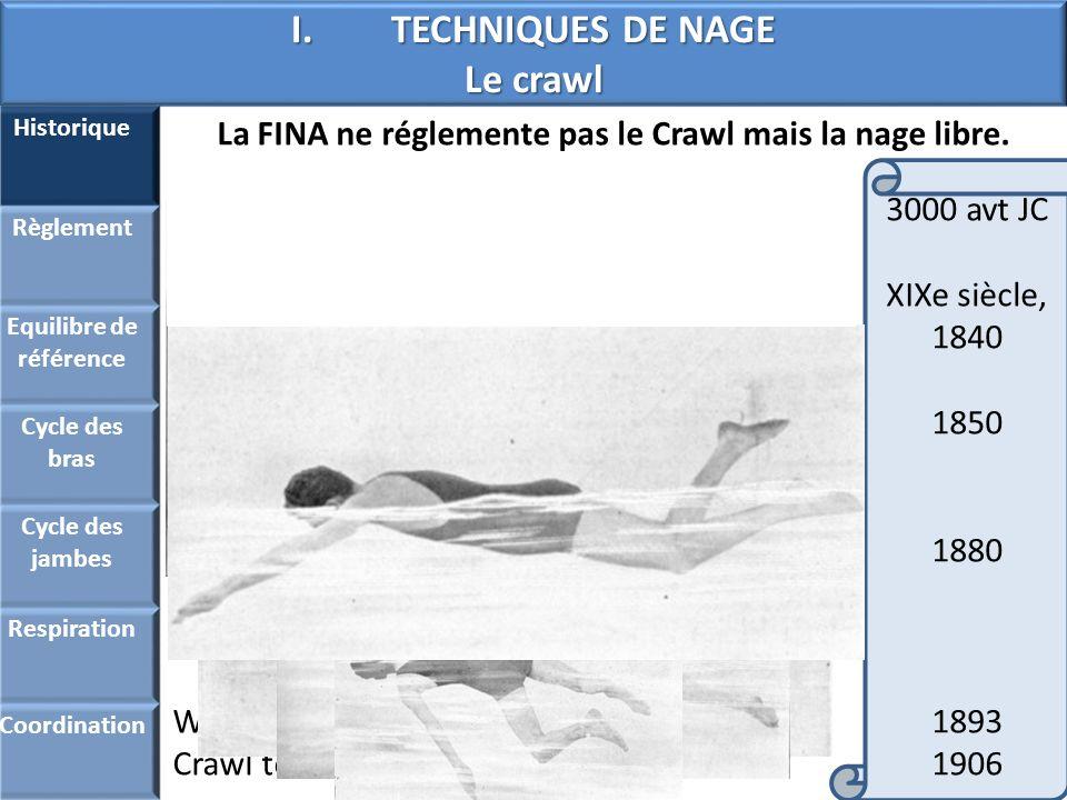 TECHNIQUES DE NAGE Le crawl