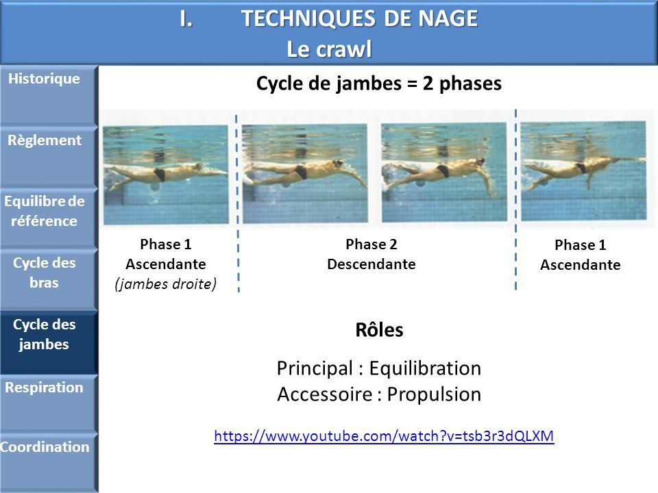 Equilibre de référence Cycle de jambes = 2 phases