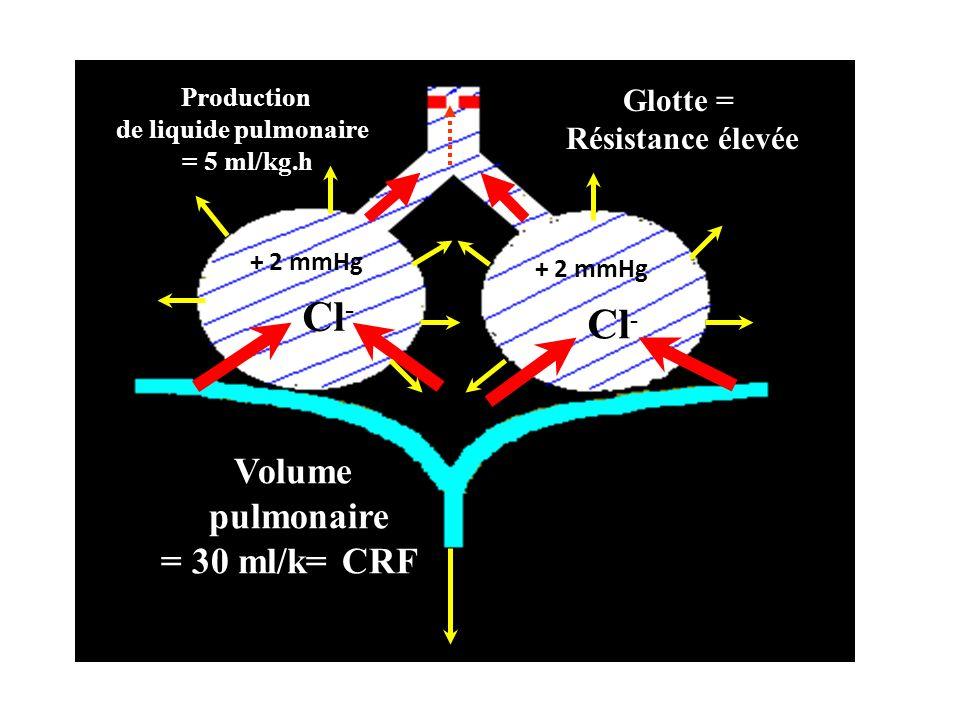Cl- Cl- Volume pulmonaire = 30 ml/k= CRFg Glotte = Résistance élevée