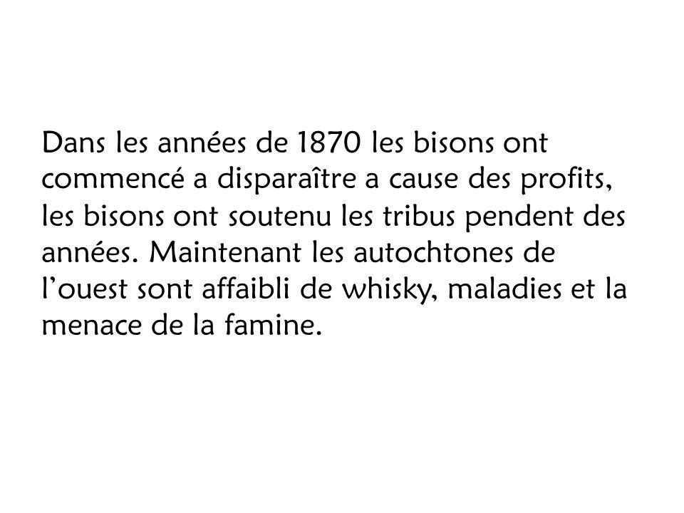 Dans les années de 1870 les bisons ont commencé a disparaître a cause des profits, les bisons ont soutenu les tribus pendent des années.