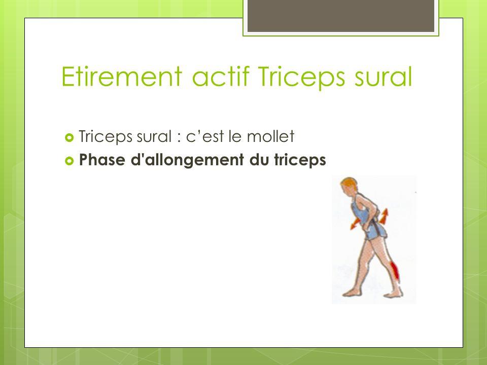 Etirement actif Triceps sural