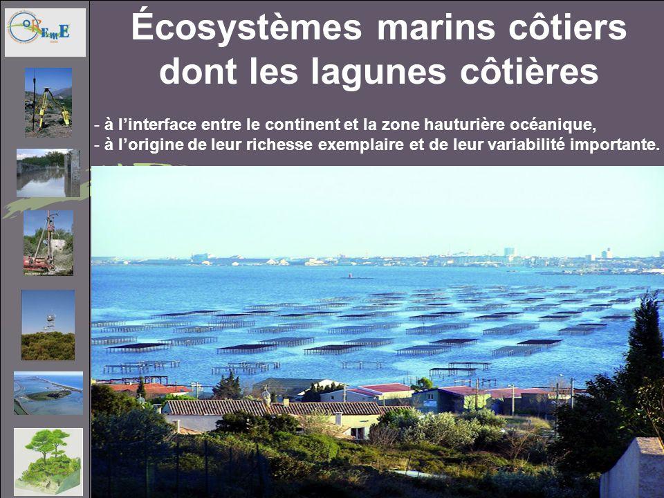 écosystèmes marins côtiers dont les lagunes côtières