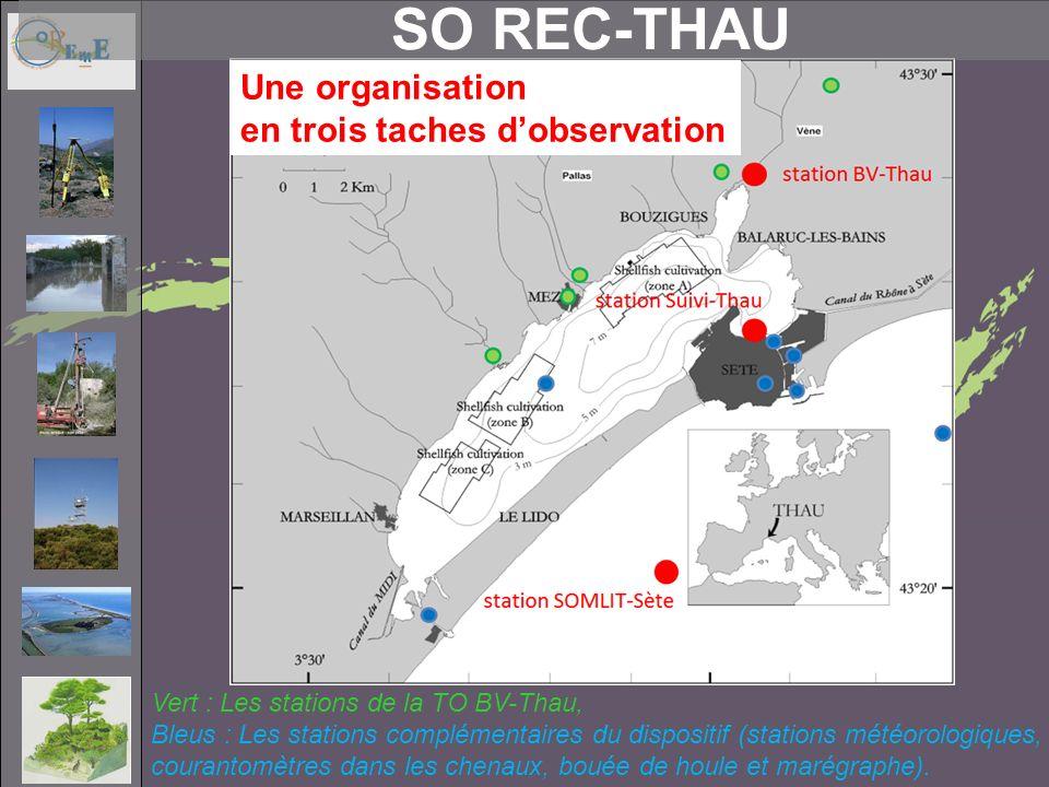 SO REC-THAU Une organisation en trois taches d'observation