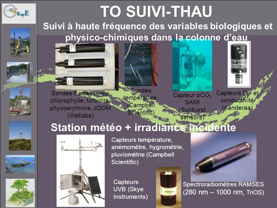 TO Suivi-Thau Suivi à haute fréquence des variables biologiques et physico-chimiques dans la colonne d'eau