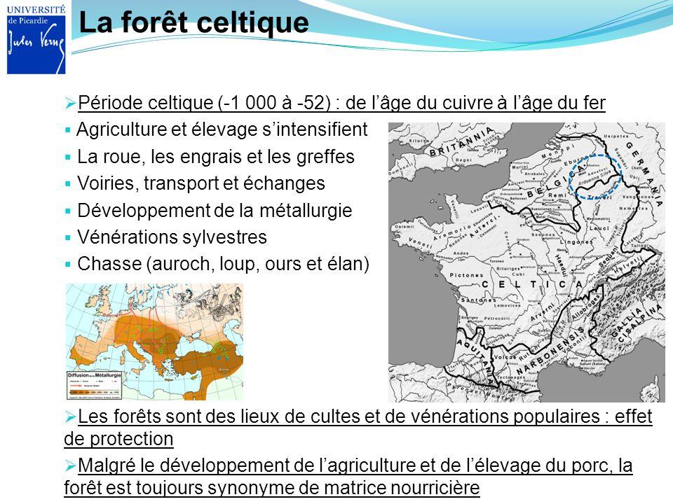 La forêt celtique Période celtique (-1 000 à -52) : de l'âge du cuivre à l'âge du fer. Agriculture et élevage s'intensifient.
