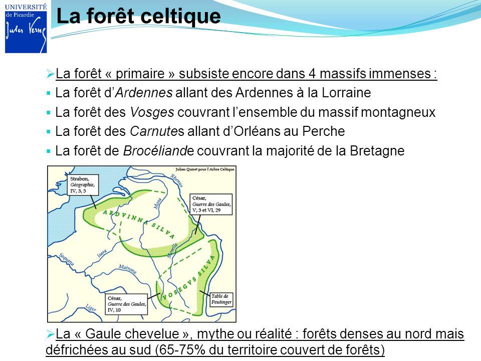 La forêt celtique La forêt « primaire » subsiste encore dans 4 massifs immenses : La forêt d'Ardennes allant des Ardennes à la Lorraine.