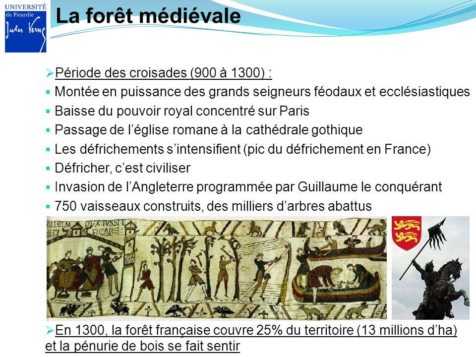 La forêt médiévale Période des croisades (900 à 1300) :