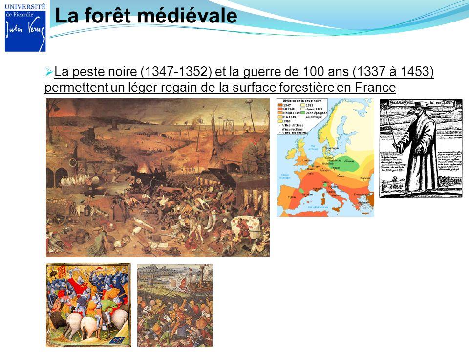 La forêt médiévale La peste noire (1347-1352) et la guerre de 100 ans (1337 à 1453) permettent un léger regain de la surface forestière en France.