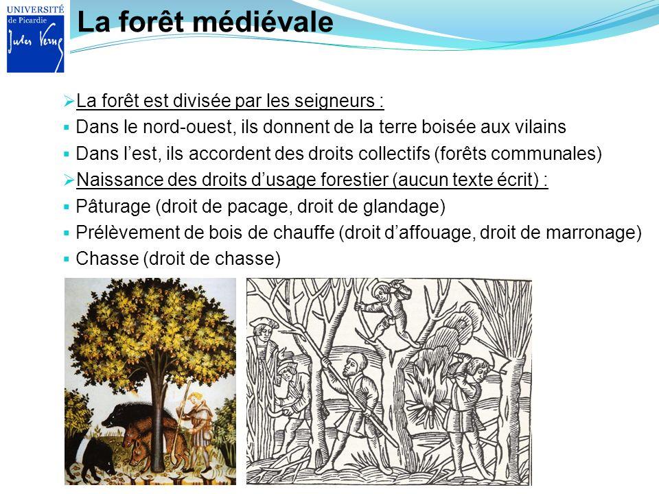 La forêt médiévale La forêt est divisée par les seigneurs :