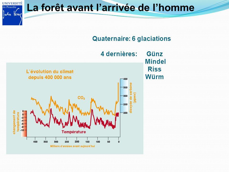 Quaternaire: 6 glaciations 4 dernières: Günz Mindel Riss Würm