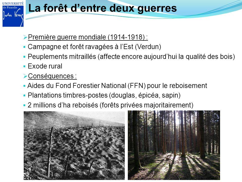 La forêt d'entre deux guerres