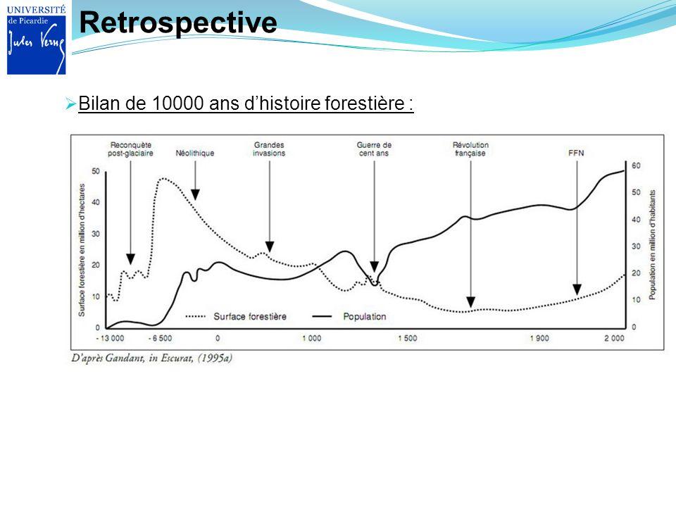 Retrospective Bilan de 10000 ans d'histoire forestière :