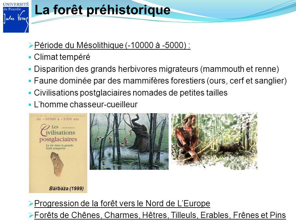 La forêt préhistorique