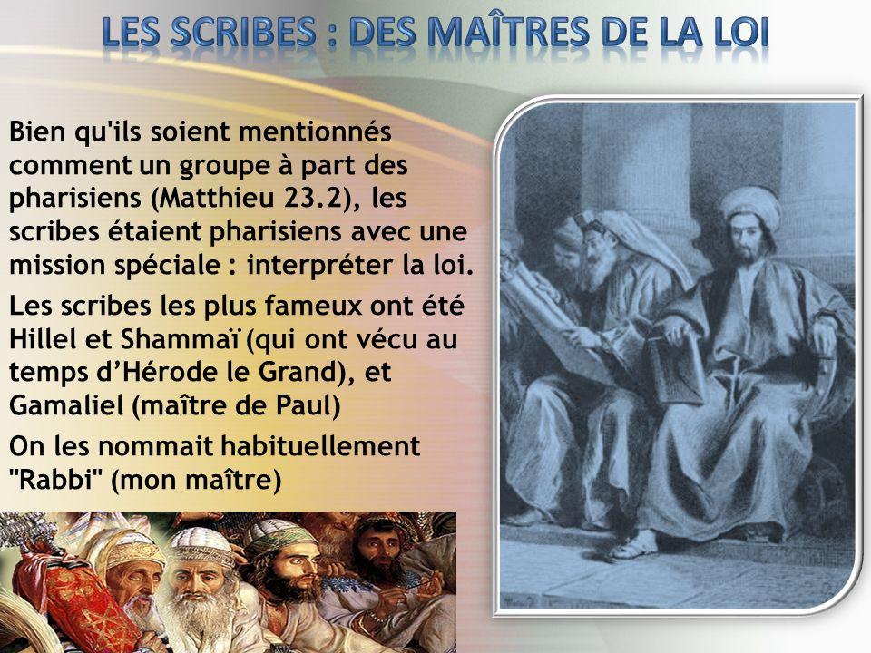 LES SCRIBES : DES MAÎTRES DE LA LOI