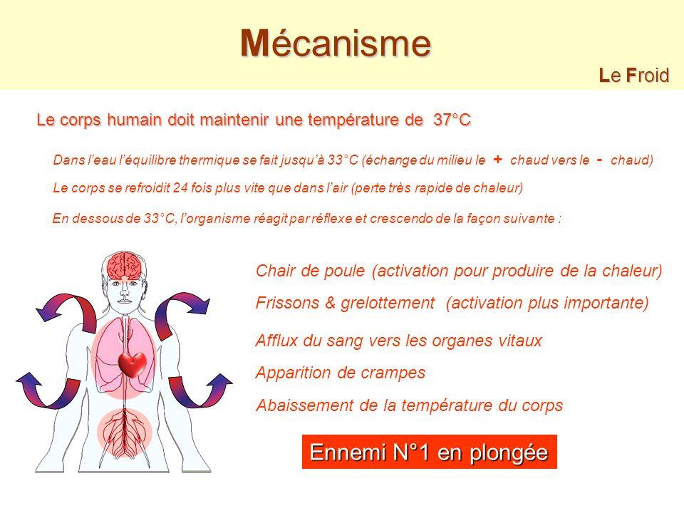 Mécanisme Ennemi N°1 en plongée Le Froid