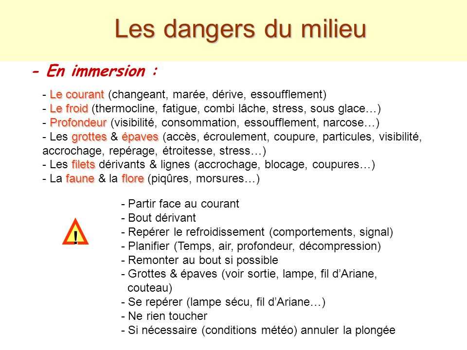 Les dangers du milieu ! - En immersion :