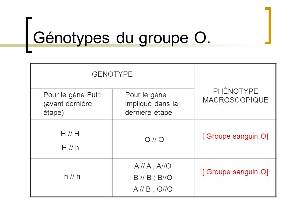 Génotypes du groupe O. GENOTYPE PHÉNOTYPE MACROSCOPIQUE