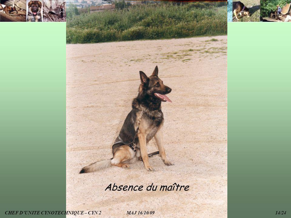 Absence du maître CHEF D'UNITE CYNOTECHNIQUE – CYN 2 MAJ 16/10/09 14/24.