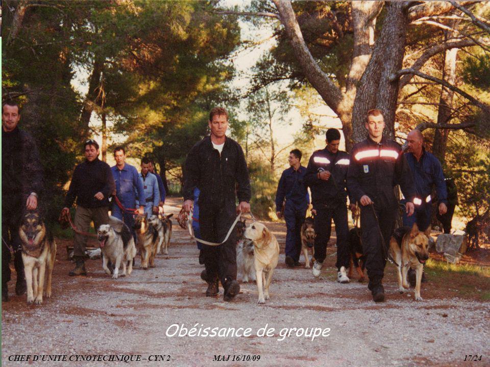 Obéissance de groupe CHEF D'UNITE CYNOTECHNIQUE – CYN 2 MAJ 16/10/09 17/24.