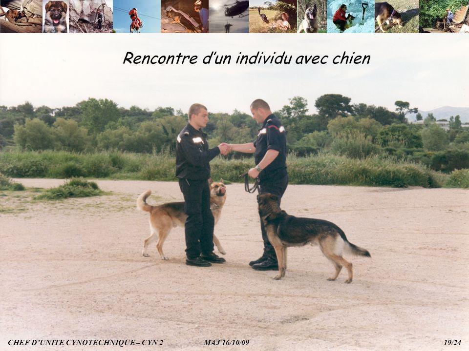 Rencontre d'un individu avec chien