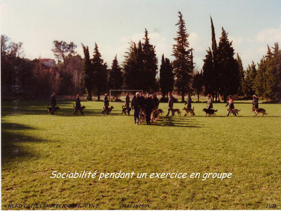 Sociabilité pendant un exercice en groupe
