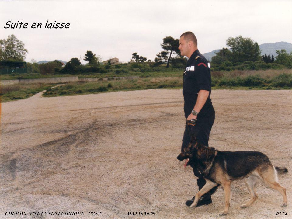 Suite en laisse CHEF D'UNITE CYNOTECHNIQUE – CYN 2 MAJ 16/10/09 07/24.