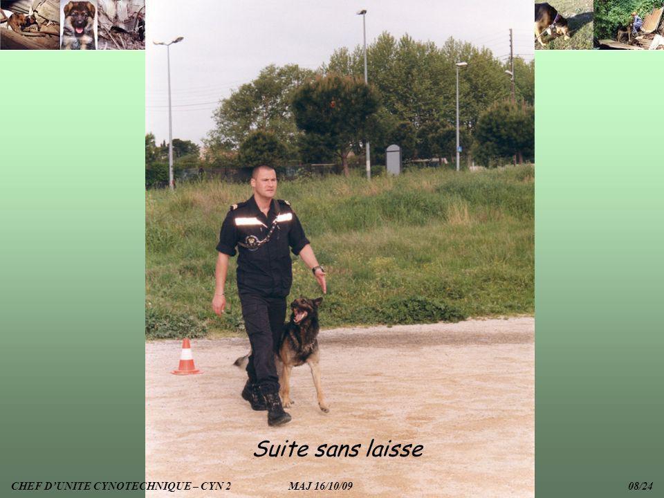 Suite sans laisse CHEF D'UNITE CYNOTECHNIQUE – CYN 2 MAJ 16/10/09 08/24.