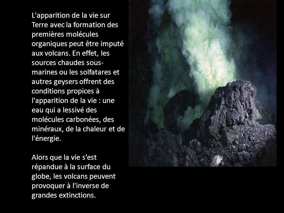 L apparition de la vie sur Terre avec la formation des premières molécules organiques peut être imputé aux volcans. En effet, les sources chaudes sous-marines ou les solfatares et autres geysers offrent des conditions propices à l apparition de la vie : une eau qui a lessivé des molécules carbonées, des minéraux, de la chaleur et de l énergie.