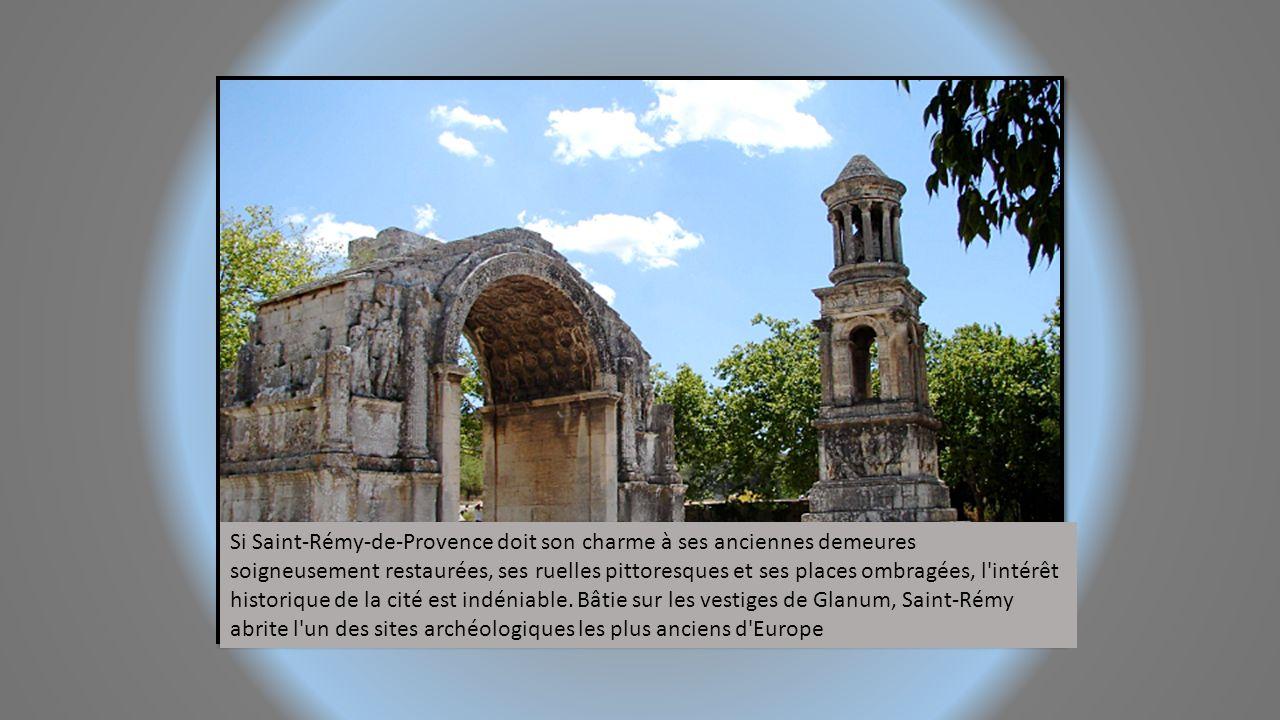 Si Saint-Rémy-de-Provence doit son charme à ses anciennes demeures soigneusement restaurées, ses ruelles pittoresques et ses places ombragées, l intérêt historique de la cité est indéniable.