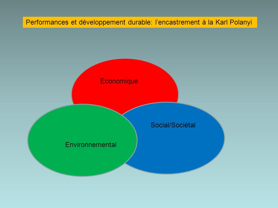 Performances et développement durable: l'encastrement à la Karl Polanyi