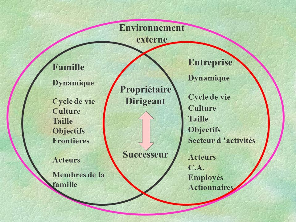 Environnement externe PropriétaireDirigeant
