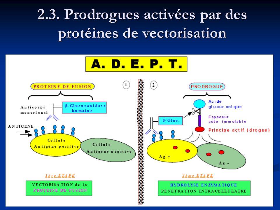 2.3. Prodrogues activées par des protéines de vectorisation