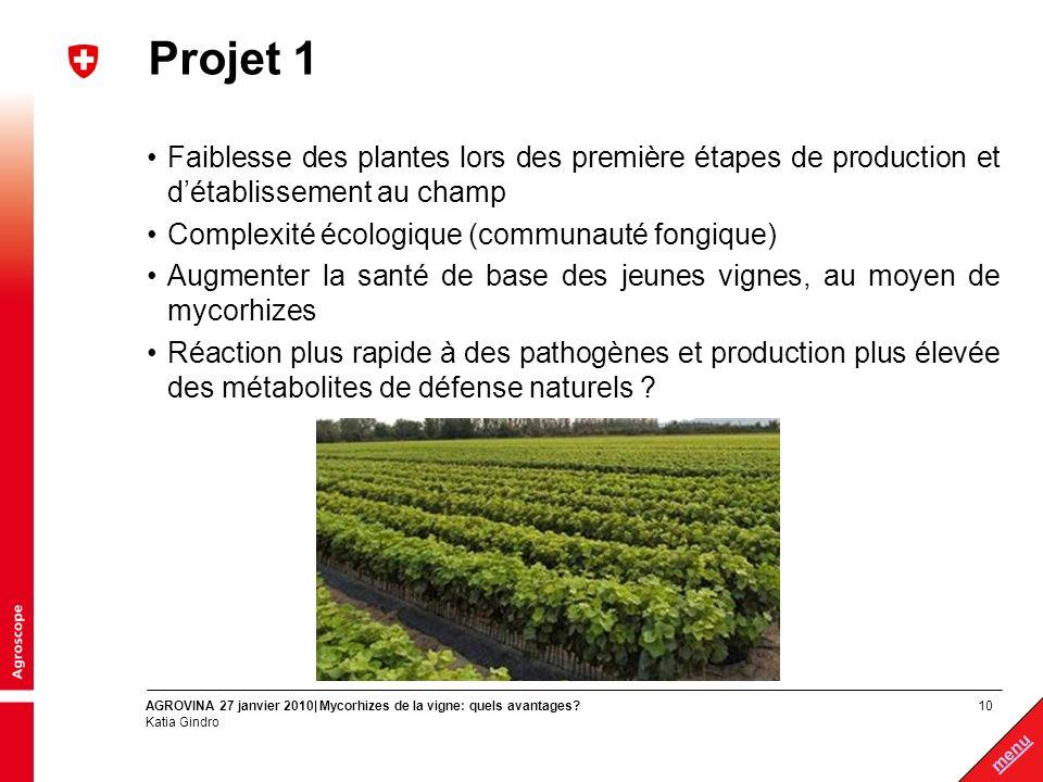 Projet 1 Faiblesse des plantes lors des première étapes de production et d'établissement au champ.