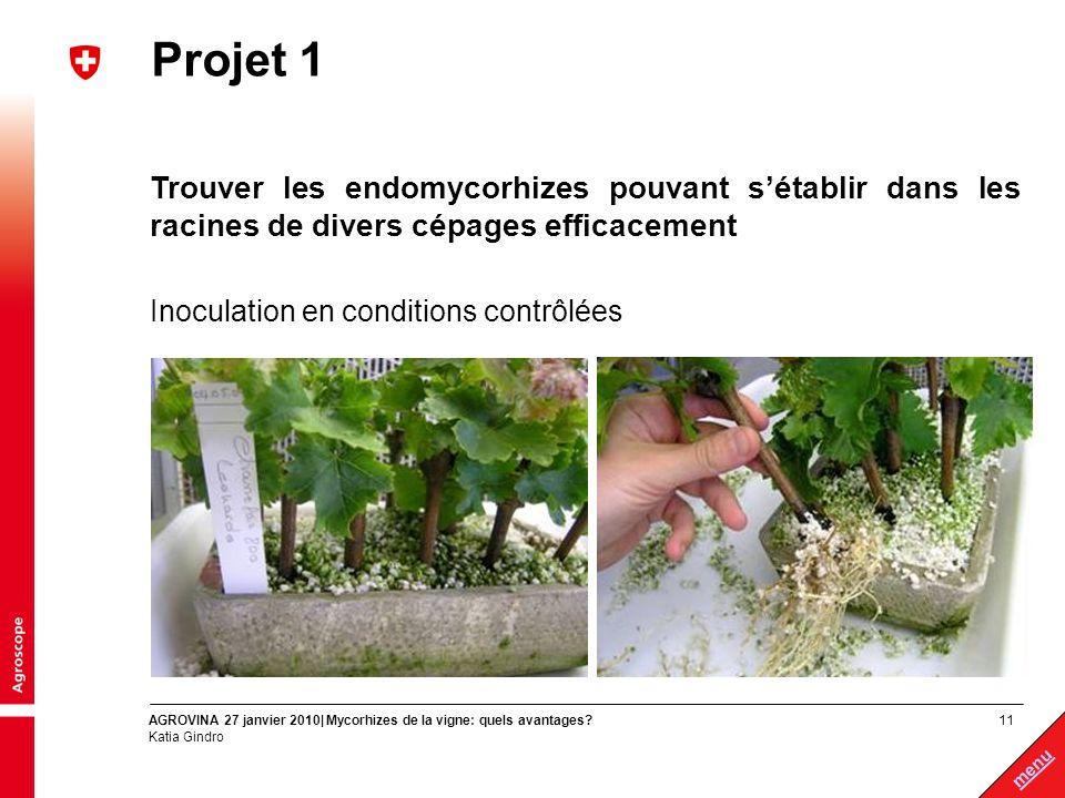 Projet 1 Trouver les endomycorhizes pouvant s'établir dans les racines de divers cépages efficacement.