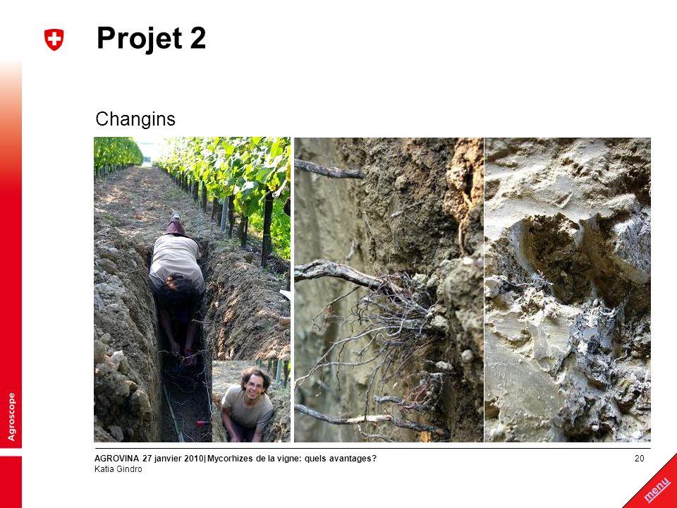 Projet 2 Changins AGROVINA 27 janvier 2010| Mycorhizes de la vigne: quels avantages Katia Gindro