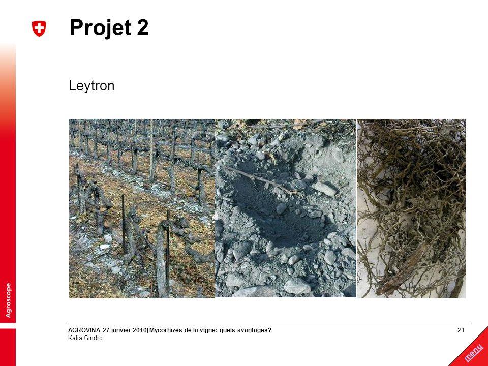 Projet 2 Leytron AGROVINA 27 janvier 2010| Mycorhizes de la vigne: quels avantages Katia Gindro