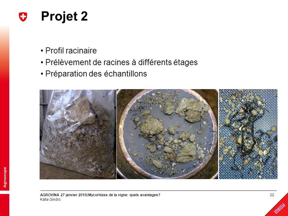 Projet 2 Profil racinaire Prélèvement de racines à différents étages