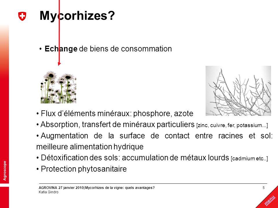 Mycorhizes Echange de biens de consommation