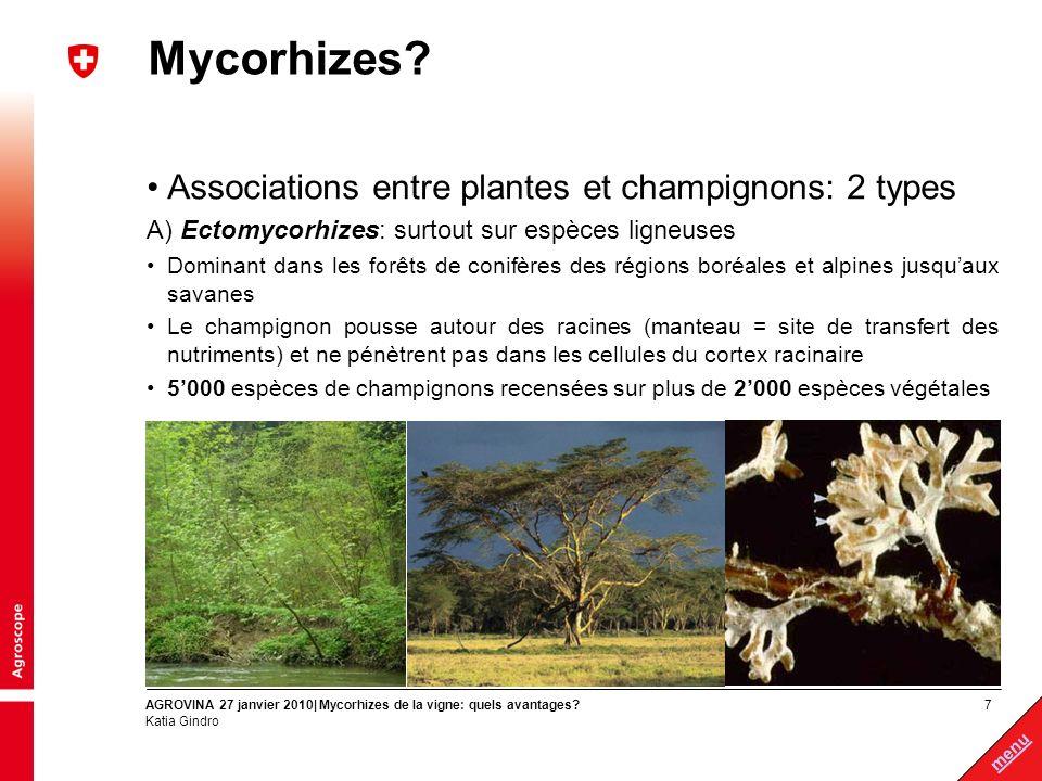 Mycorhizes Associations entre plantes et champignons: 2 types