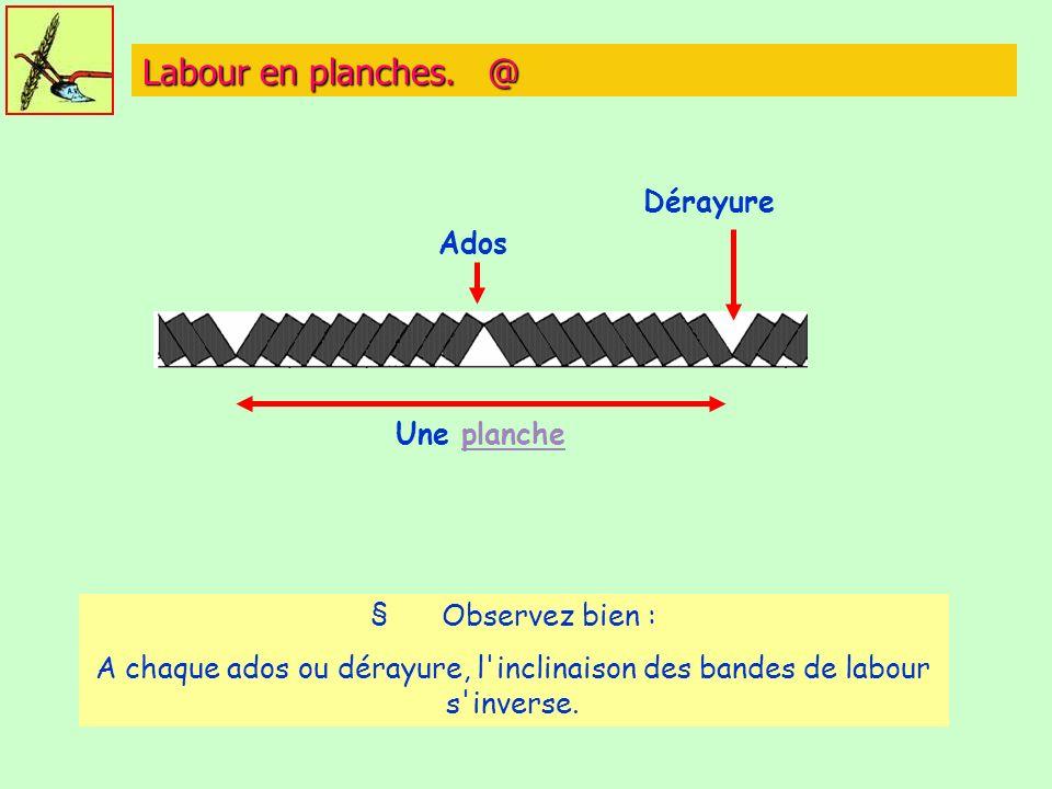 Labour en planches. @ Dérayure Ados Une planche § Observez bien :