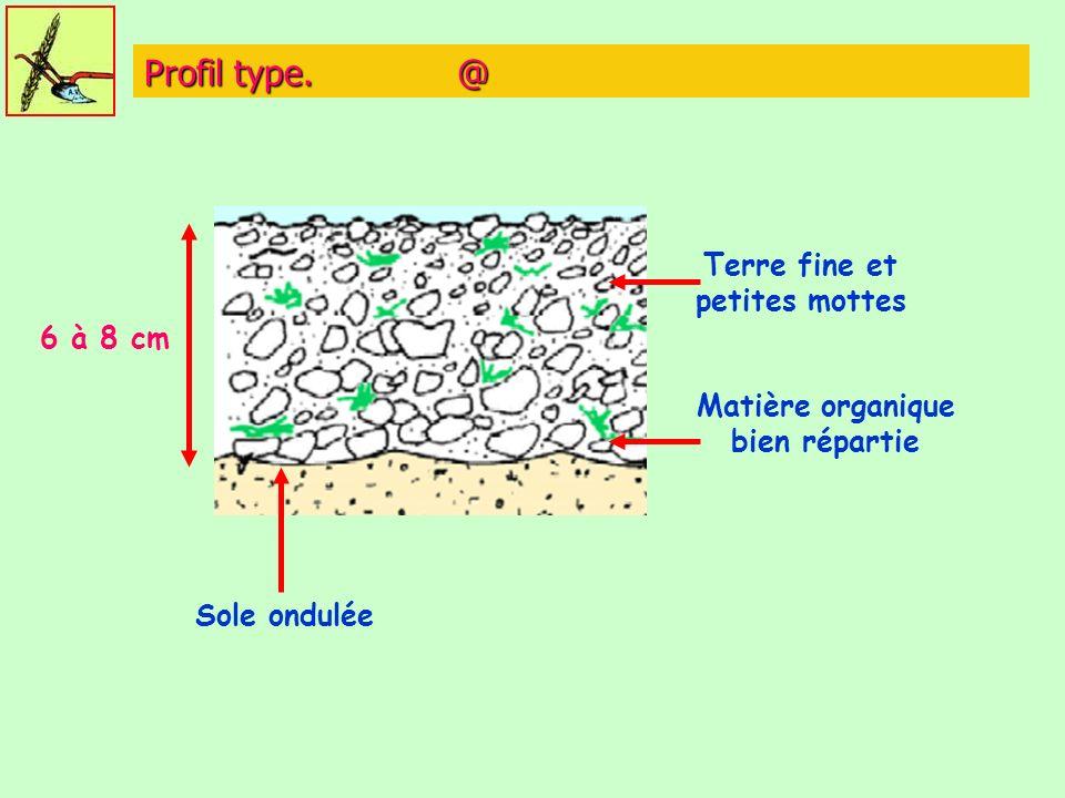 Terre fine et petites mottes Matière organique bien répartie