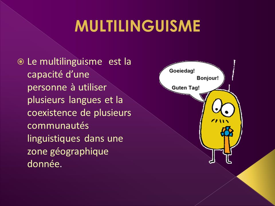 MULTILINGUISME